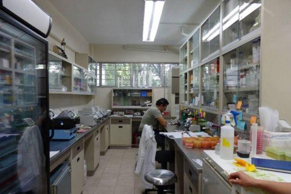 laboratorio-biomedicina-molecular2AA79A59-080D-6167-34A0-2F419F9CCEA2.jpg