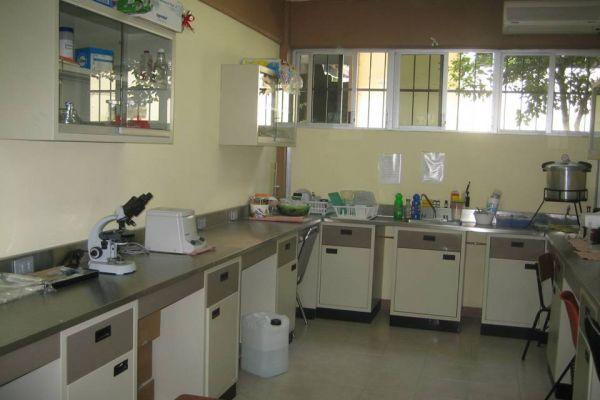 laboratorio-de-inmunobiologia-e-inmunodiagnostico134DD093-5681-1F82-4CC6-F295E1303B40.jpg