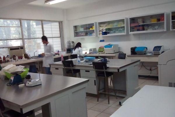 laboratorio-de-obesidad-y-diabetes-145D072B7-0103-2C78-ACD3-63A5ADCB2A00.jpg